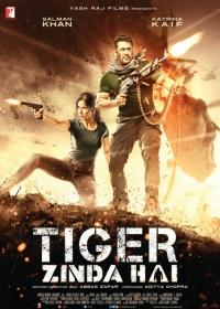 Tiger Zinda Hai-posser