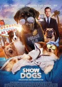 Show Dogs-posser