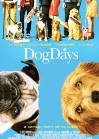 Dog Days-posser