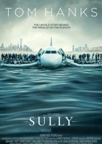 Sully-posser